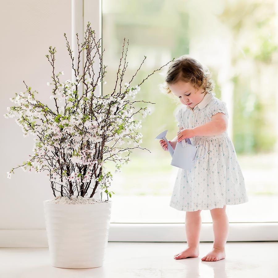 Allaway Oy Lapsi kastelee kukkia